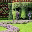 Normal_garden
